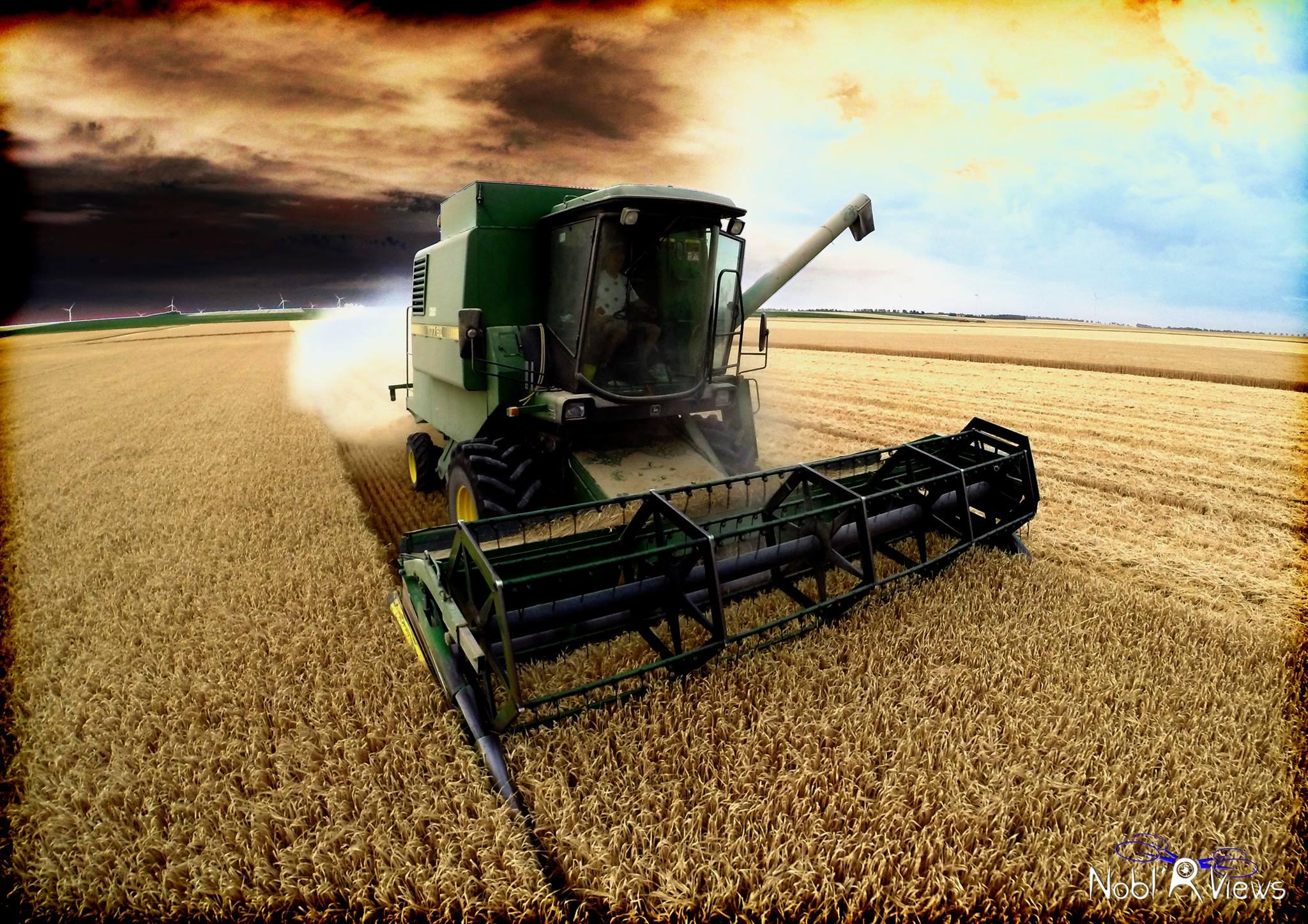 Photos du Secteur Agricole